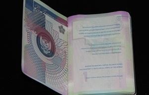 Sebuah Paspor