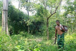 Jadav Payeng : Manusia Hutan dari India